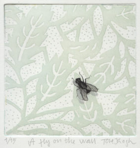 Tove Krogh : «A fly on the wall»