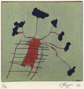 Christian Zsagar : «El volcán»