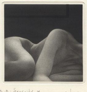 Mikio Watanabe : «Sérénité»