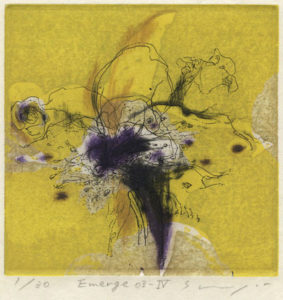 Shogo Muto : «Emerge 03-IV»