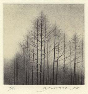 Shigeki Tomura : «The evening in winter»