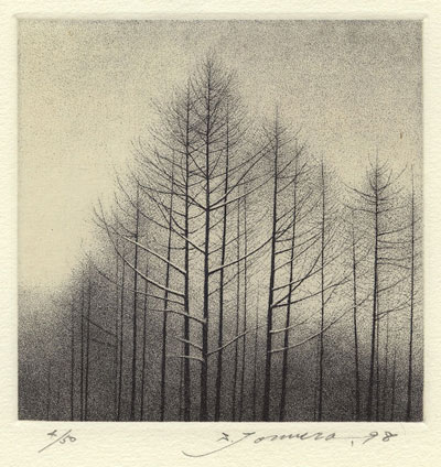 Shigeki Tomura : «The evening in winter»