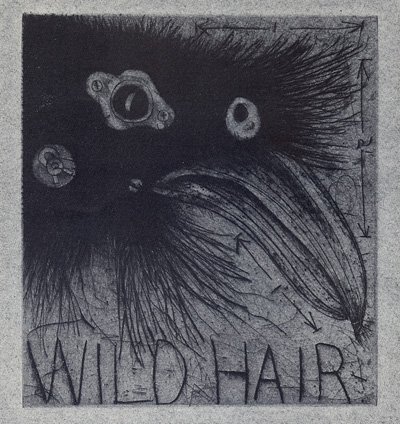 William Bernard Schade : «Wild hair»