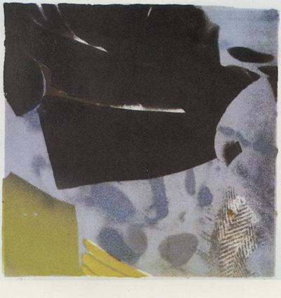 Paul L. Stewart : «Whale song»