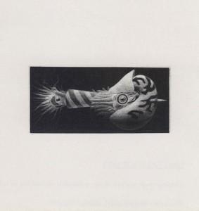Kotaro Suzuki : «Nautilus M.S.V.»
