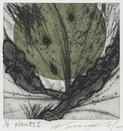 Naomi Kasai : «Plants – I»