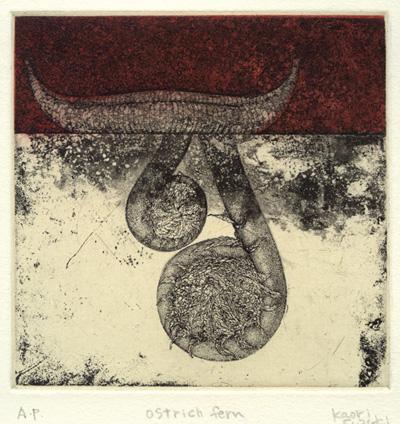 Kaori Suzuki : «Ostrich fern»
