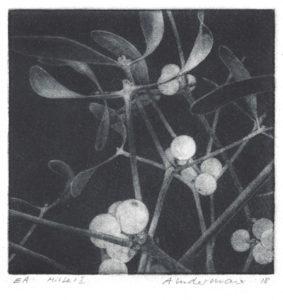 Agnes Indermaur : «Mistel – I»